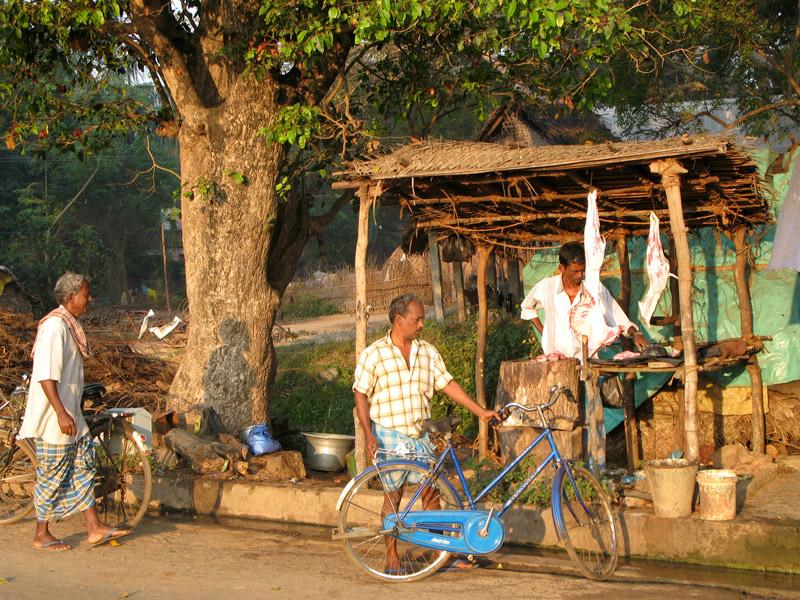 Village butcher, Auroville, India