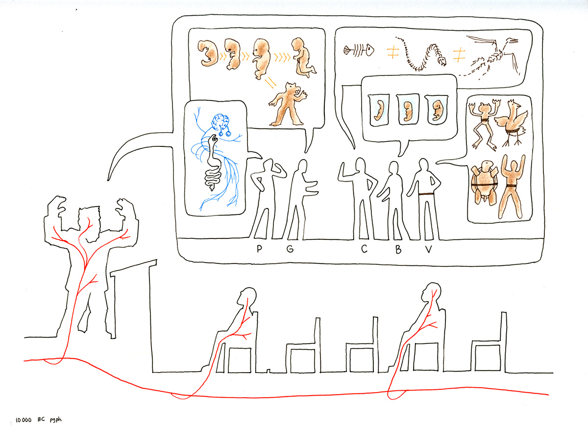 Drawing A Thousand Plateaus,10,000 BC, paragraph 12a