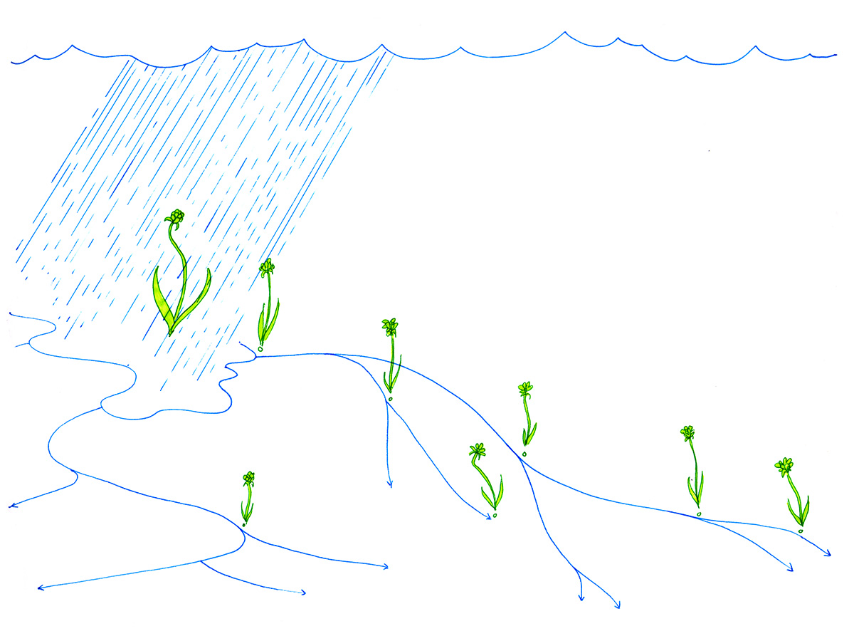 Drawing A Thousand Plateaus, Introduction, paragraph 9b