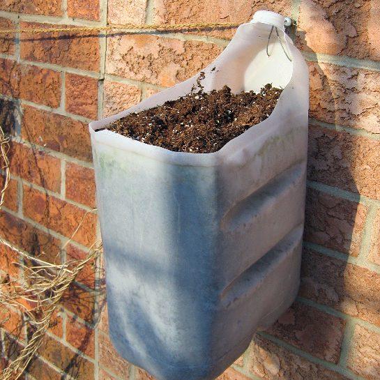 reused-plastic-water-jug-hanging-brick-wall