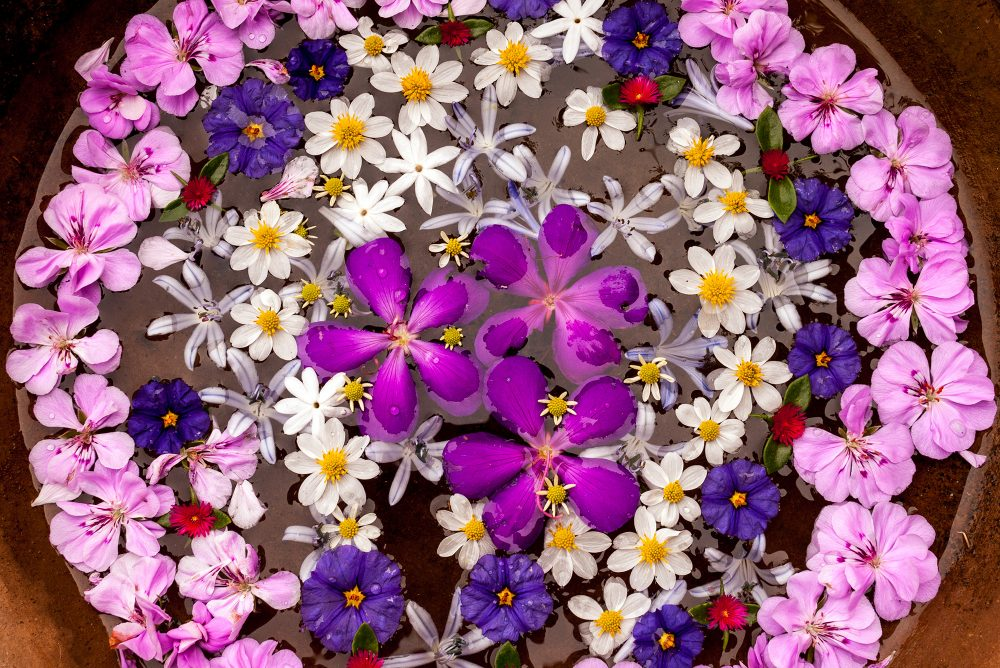 Floating flower mandala closeup.