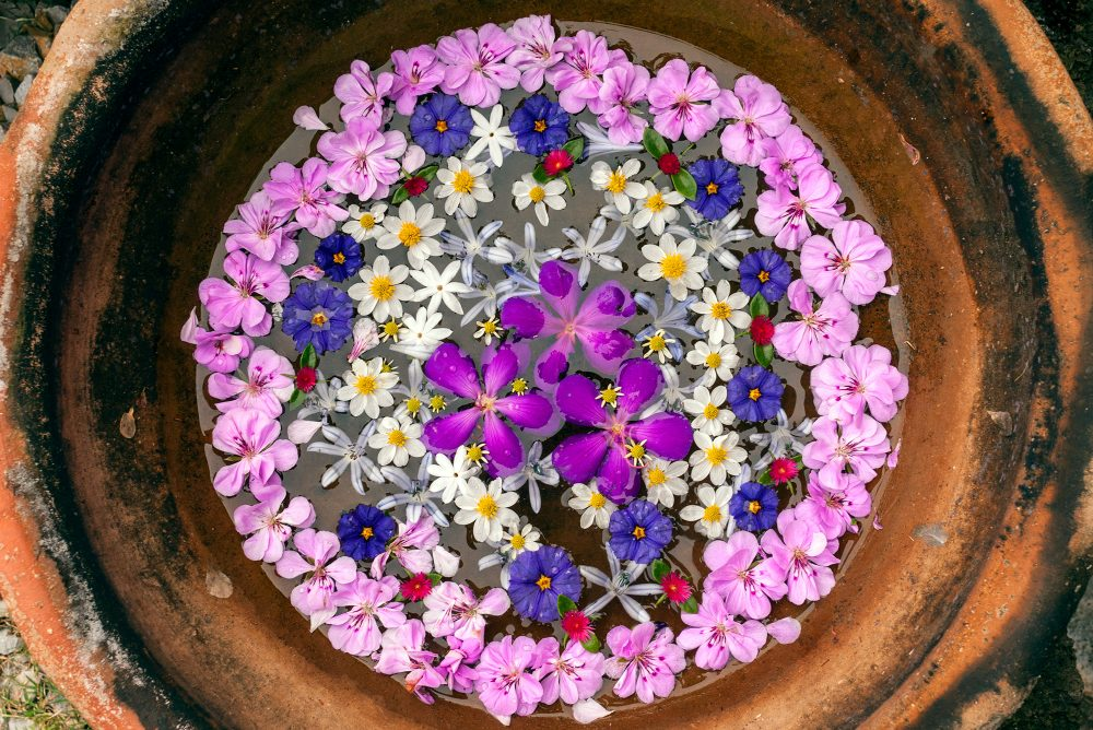 Floating flower mandala in a clay bowl.