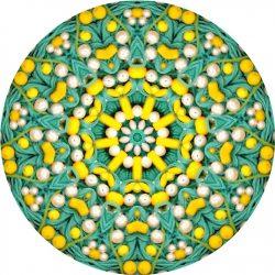 Mandala photo with beads
